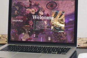 website-design-david-tutera